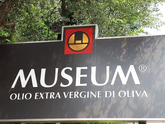 Cisano, Italy: 20180713_113739_large.jpg