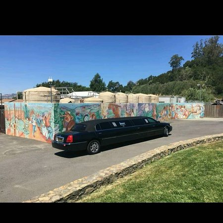 South San Francisco, Kalifornia: Take a ride in a Luxury Limousine.