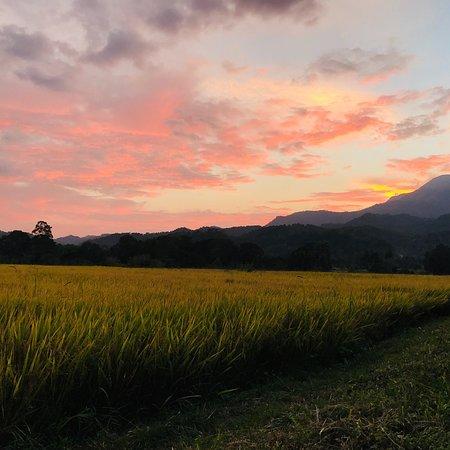 Wellawaya, Sri Lanka: photo1.jpg