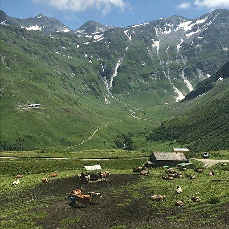 La Fouly, Ελβετία: Vue de la Terrasse