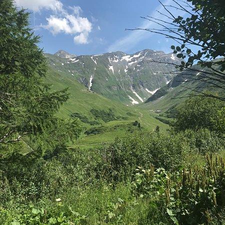 La Fouly, Ελβετία: Vue du chemin qui monte à l'alpage