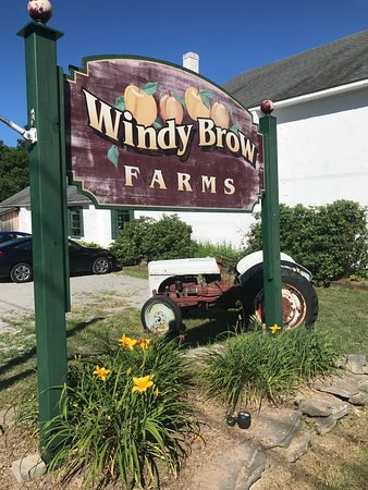 ‪Windy Brow Farms‬