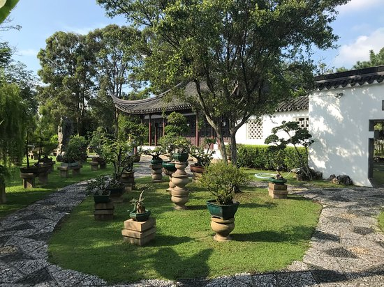 Chinese and Japanese Gardens Photo