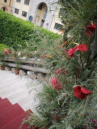 Scalinata Picture Of Terrazza Yucca Busto Arsizio