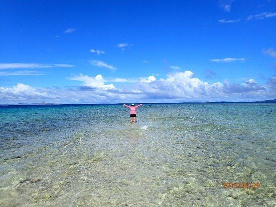 Mamanuca Islands, ฟิจิ: P4290246_large.jpg