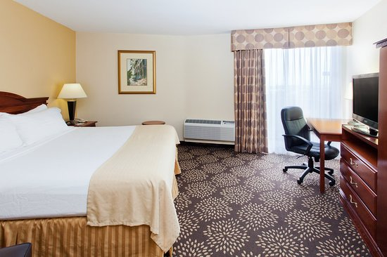 Holiday Inn Charleston Riverview: Guest room
