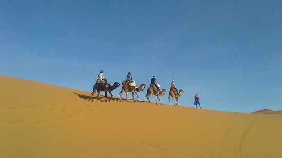 Morocco Desert Trek - Day Tours