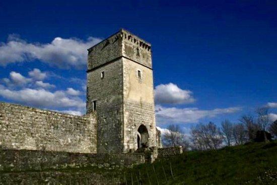Bellocq, Frankreich: Château