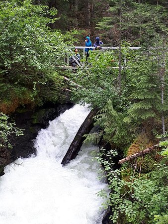 Wells Gray Provincial Park: 20180702_154216_large.jpg