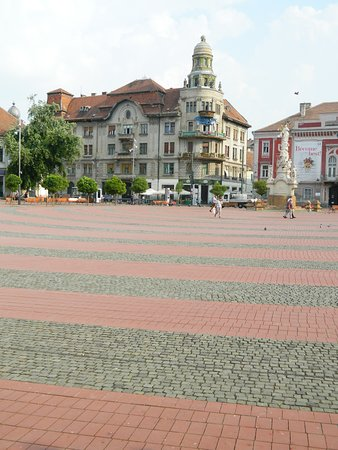 Libertatii Square: Interesting pink and gray pavement is Liberty Square of Timisoara