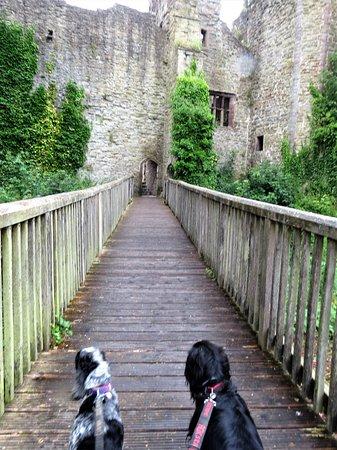 Ludlow Castle: Exploring