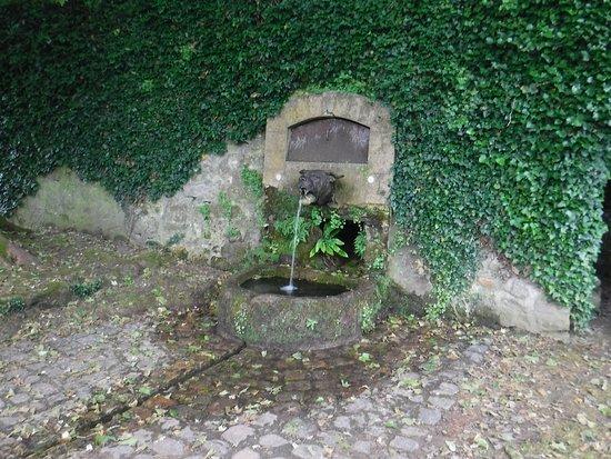 Aisne, França: Bull Dog Fountain