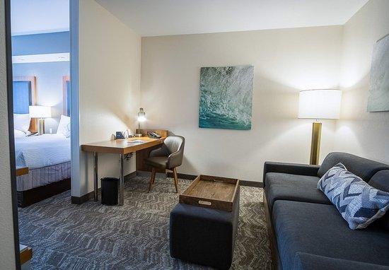 SpringHill Suites Winston-Salem Hanes Mall: Guest room