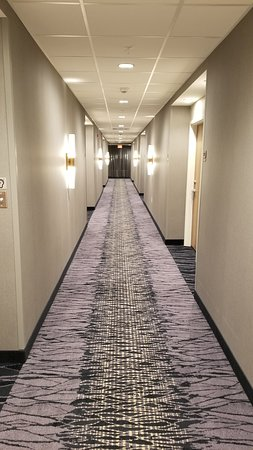 Walpole, Μασαχουσέτη: Look of the Hallway. Not the typical brown and tan bland rugs.