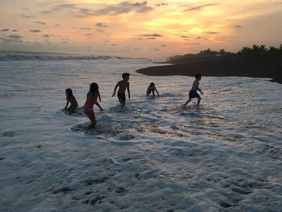 Hawaii照片