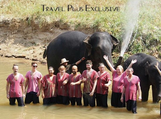 Travel Plus Exclusive
