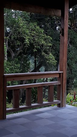 img 20180705 wa0000 large jpg picture of bucu view resort ubud rh tripadvisor com