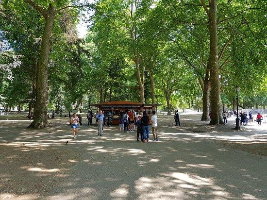 格林公园照片