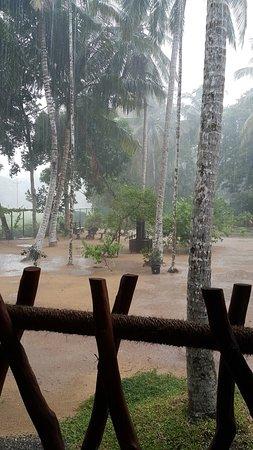 Katunayaka, Sri Lanka: Garden view from the restaurant
