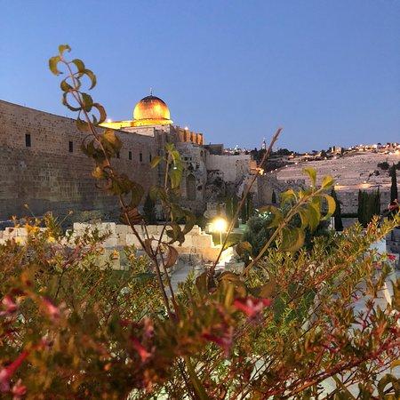 Elinor - Guida turistica in Israele