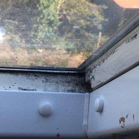Oulton Broad, UK: Dirty disgusting wine lodge hotel Lowestoft
