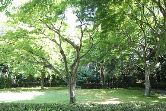 Tojogaoka Historical Park