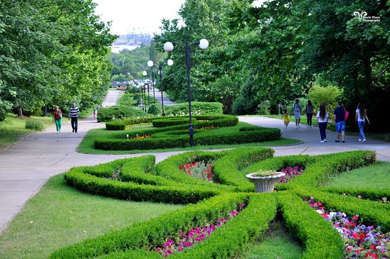 กาลาตี, โรมาเนีย: Botanic Garden