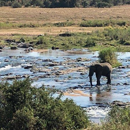Komatipoort, South Africa: photo4.jpg