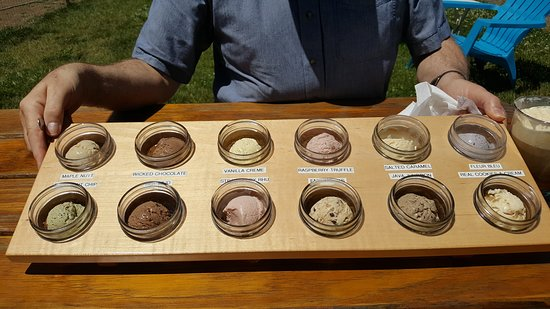 Penn Yan, NY: The 12 flavors of ice cream/frozen custard that we had.