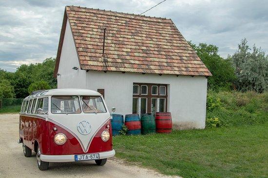 Anonym Winery: Régi pince előtt régi busz