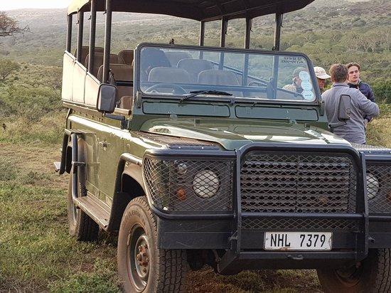 Zululand Tree Lodge : 20180714_164545_large.jpg