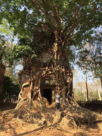 Sam Veasna Center for Wildlife Conservation (SVC): Koh Ker temple complex