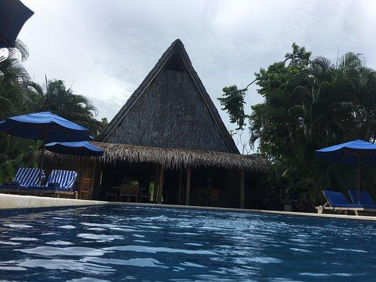 Manzanillo-billede
