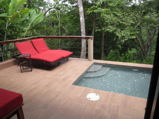 Mystic River Resort: View from the room included the splash pool and the jungle with the Macal River visible below