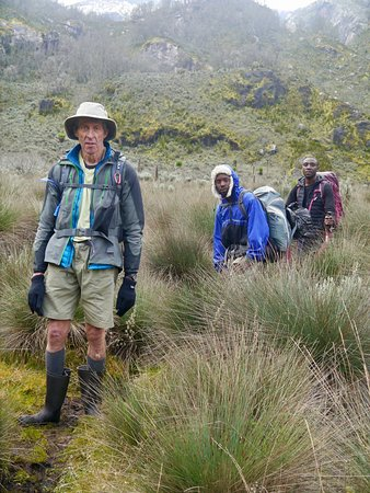 Rwenzori Mountains National Park, Uganda: Tussock grass, mud and Wellies.