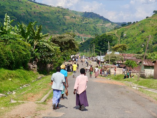 Rwenzori Mountains National Park, أوغندا: Kilembe and nearly at the end of the Trek.