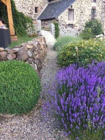 Thiezac, France: vue du jardin