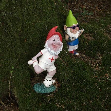 The Gnome Reserve & Wild Flower Garden: photo2.jpg