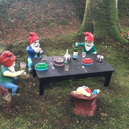 The Gnome Reserve & Wild Flower Garden: photo3.jpg