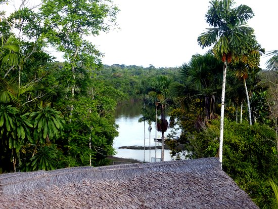 Rio Momon, Peru: View of the river from the lodge premises