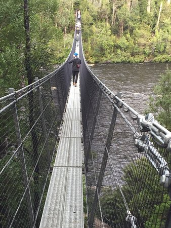 Tahune Adventures: Swinging Bridge