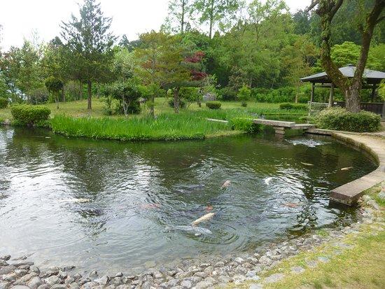 Wakasa Uriwari Meisui Park
