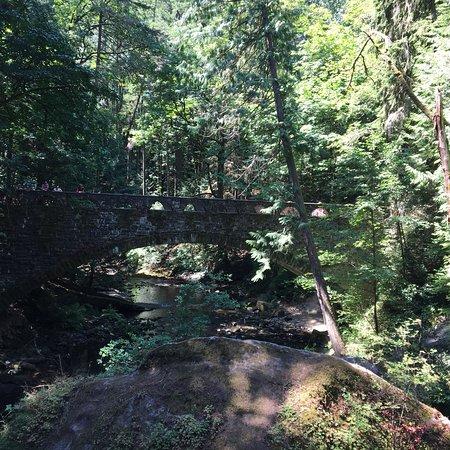 沃特康瀑布公園張圖片