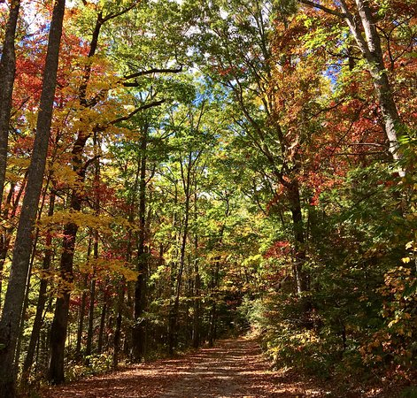 Cherokee National Forest: ride in the Fall