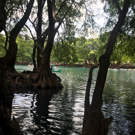 Camecuaro, Mexico: Excelente lugar!