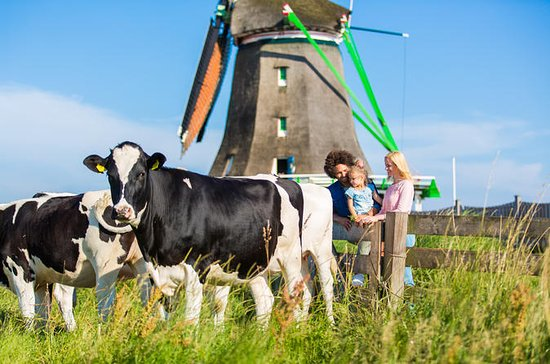 Zaanse Schans Windmills and Cheese...