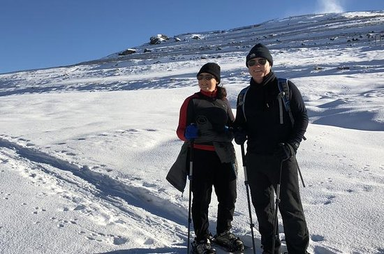 Wanaka Snowshoe Tour
