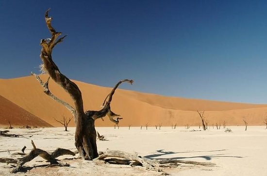 3-Day Sossusvlei Experience...