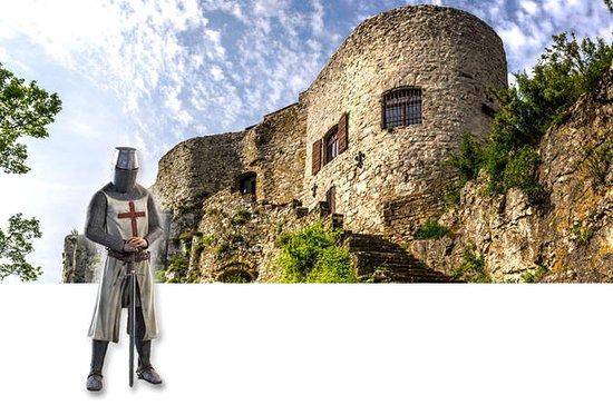Castelos e tour de vinhos