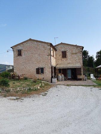 Serrapetrona, Italy: TA_IMG_20180715_082631_large.jpg